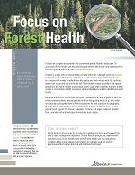 First page of Focus On, Forest Health document