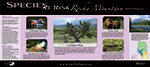 Front of Species at Risk Rocky Mountain Natural Region poster