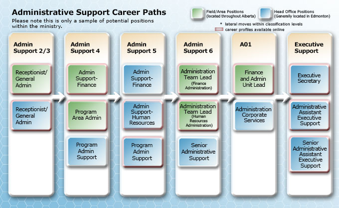 Administrative Support Career Paths, AS 2 to Executive Support