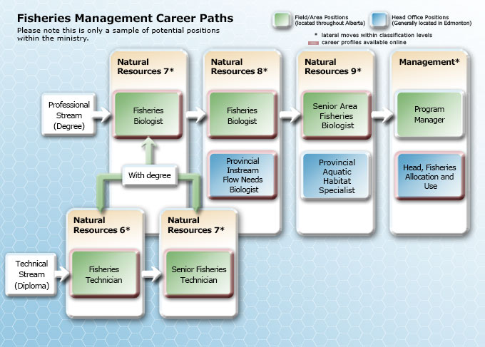 Fisheries Management Career Path