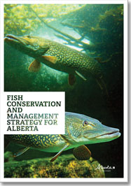 Fish Conservation and Management Strategy for Alberta; document cover depicting lake sturgeon