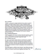 First page of Focus On, Wildlife Management document