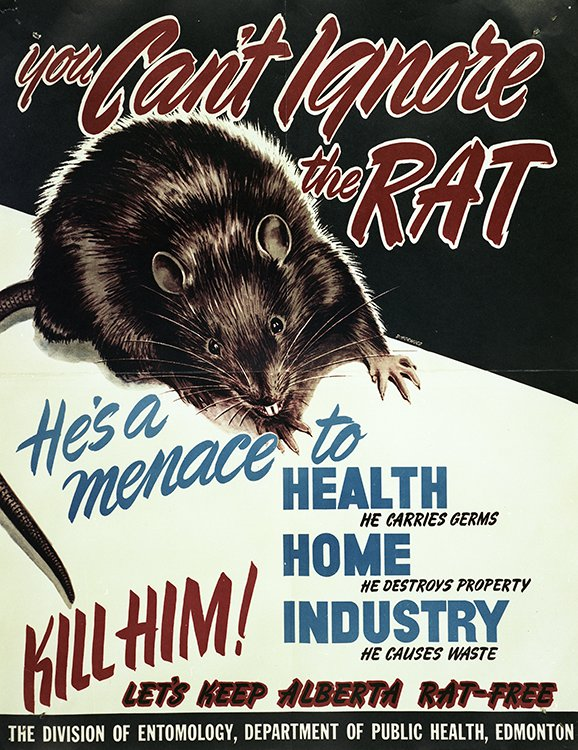 picture of rat awareness poster from the 1950s