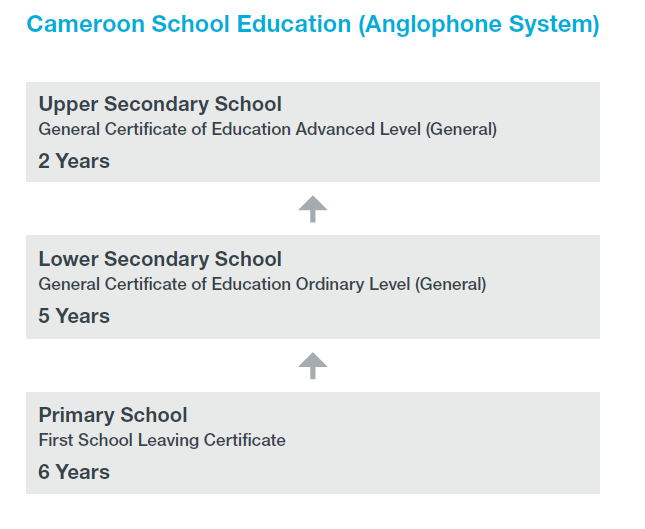 Flow chart of Cameroon's anglophone school system