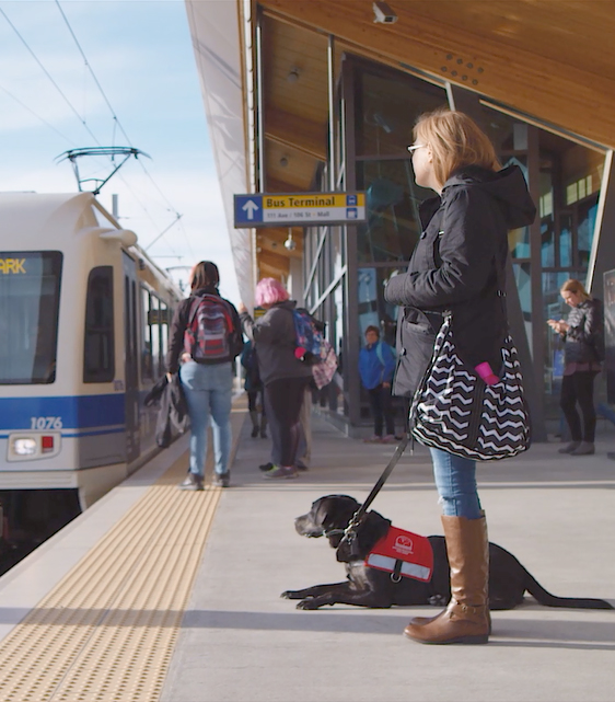 Picture of a woman with a service dog beside her waiting for a train.