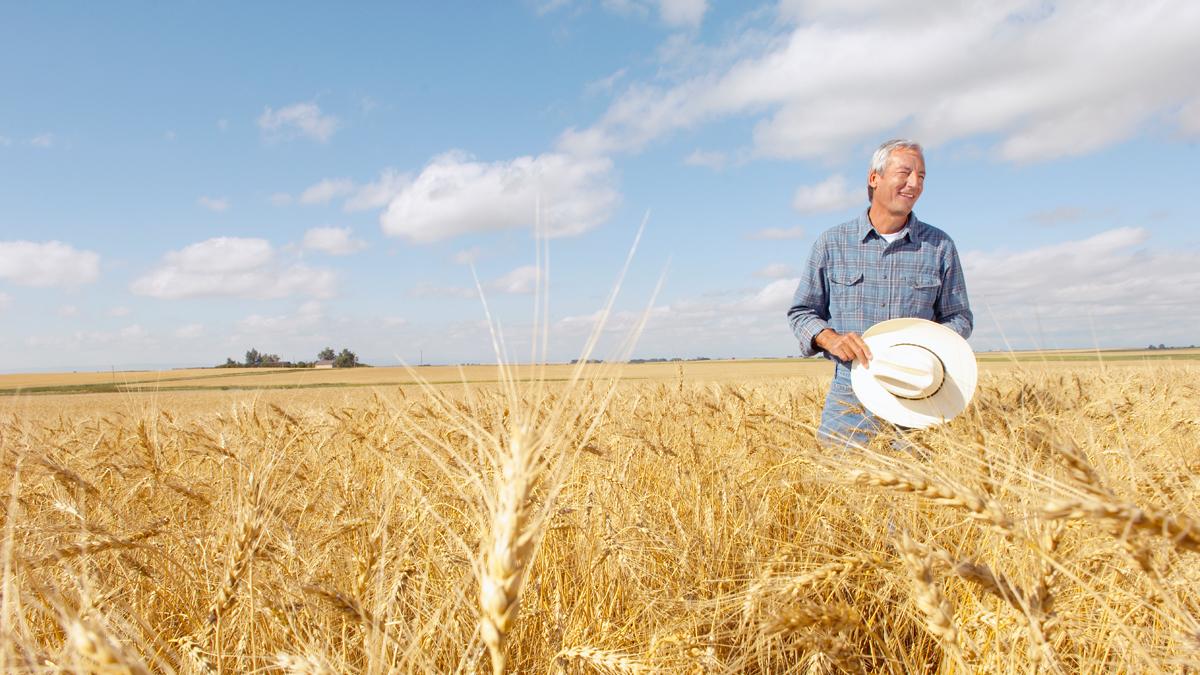 Farm and Ranch workplace legislation