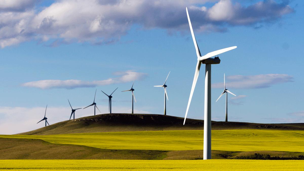 Renewable Electricity Program Alberta Ca